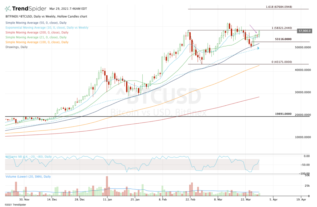 Daily chart of bitcoin prices.